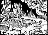 Coloriage afrique dessin crocodiles