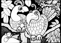 Coloriage afrique dessin oiseaux
