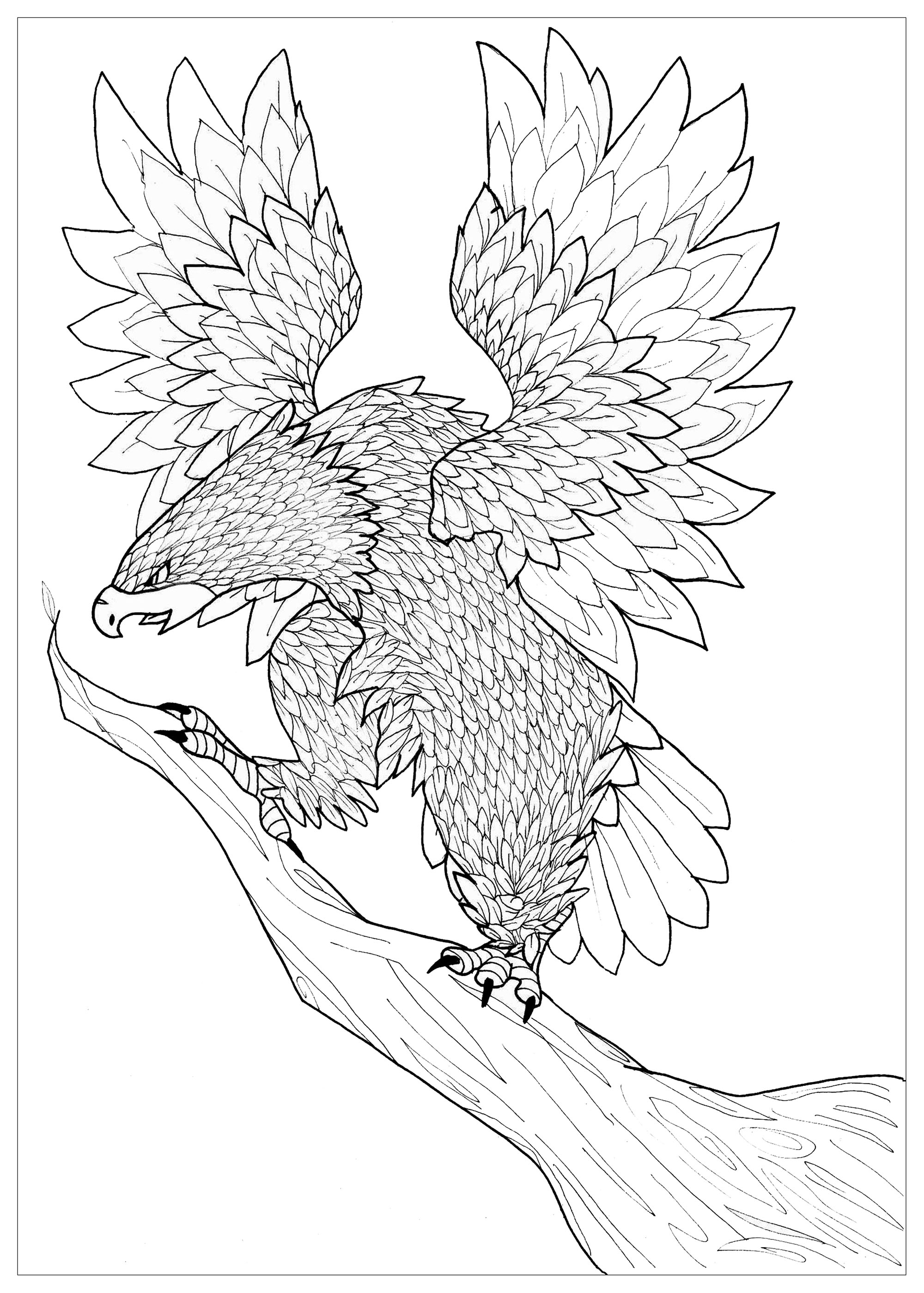 Aigle animaux coloriages difficiles pour adultes - Dessin de aigle ...