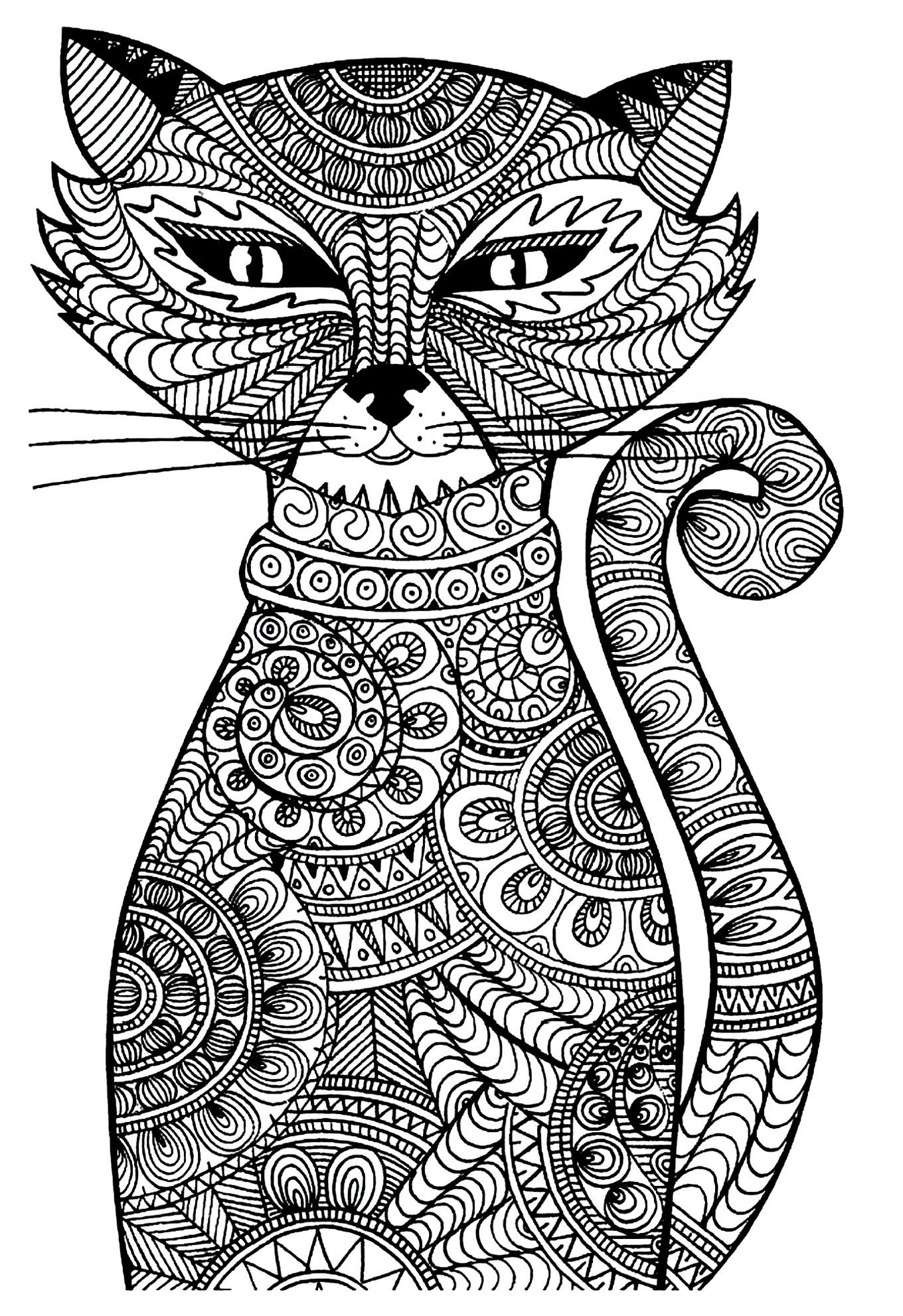 Un étrange et malicieux chat | A partir de la galerie : Animaux
