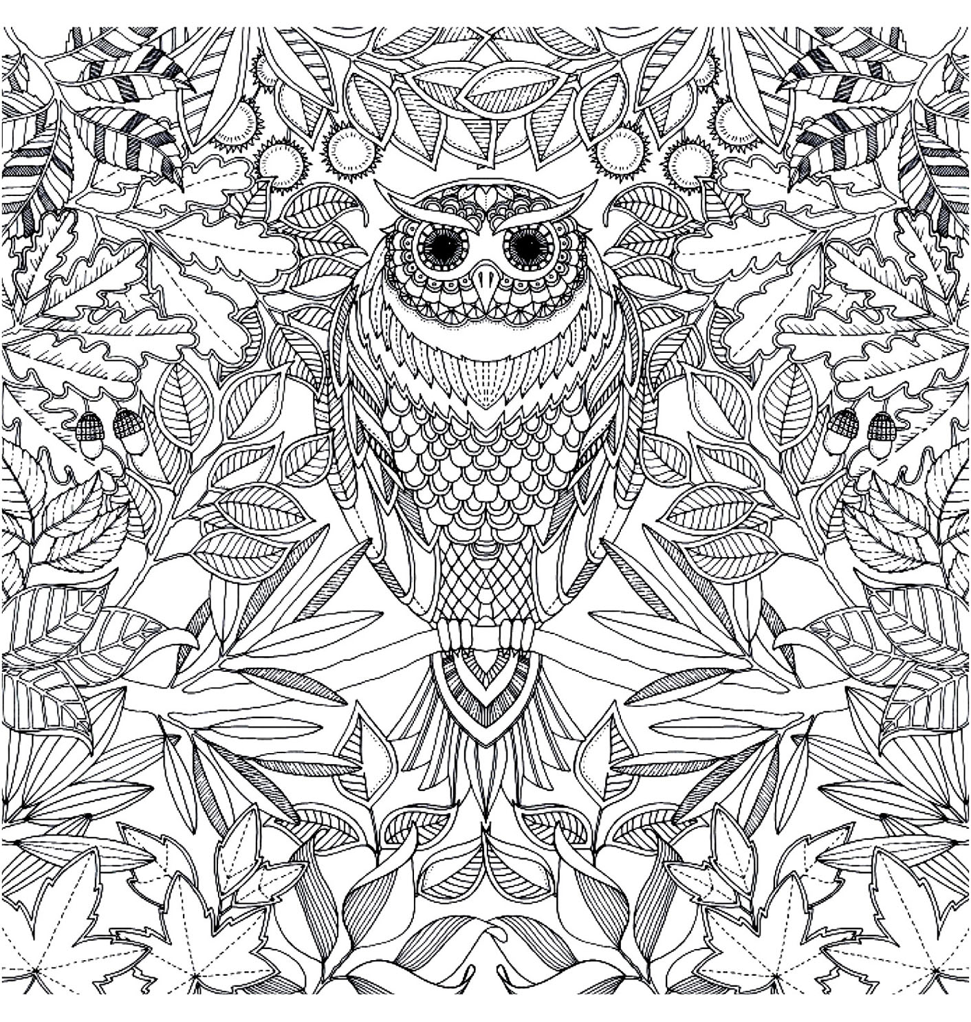coloriage adulte hibou 2 free to print