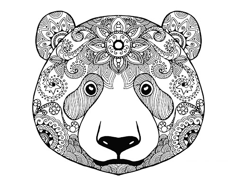 Tªte d ours  imprimer et colorier