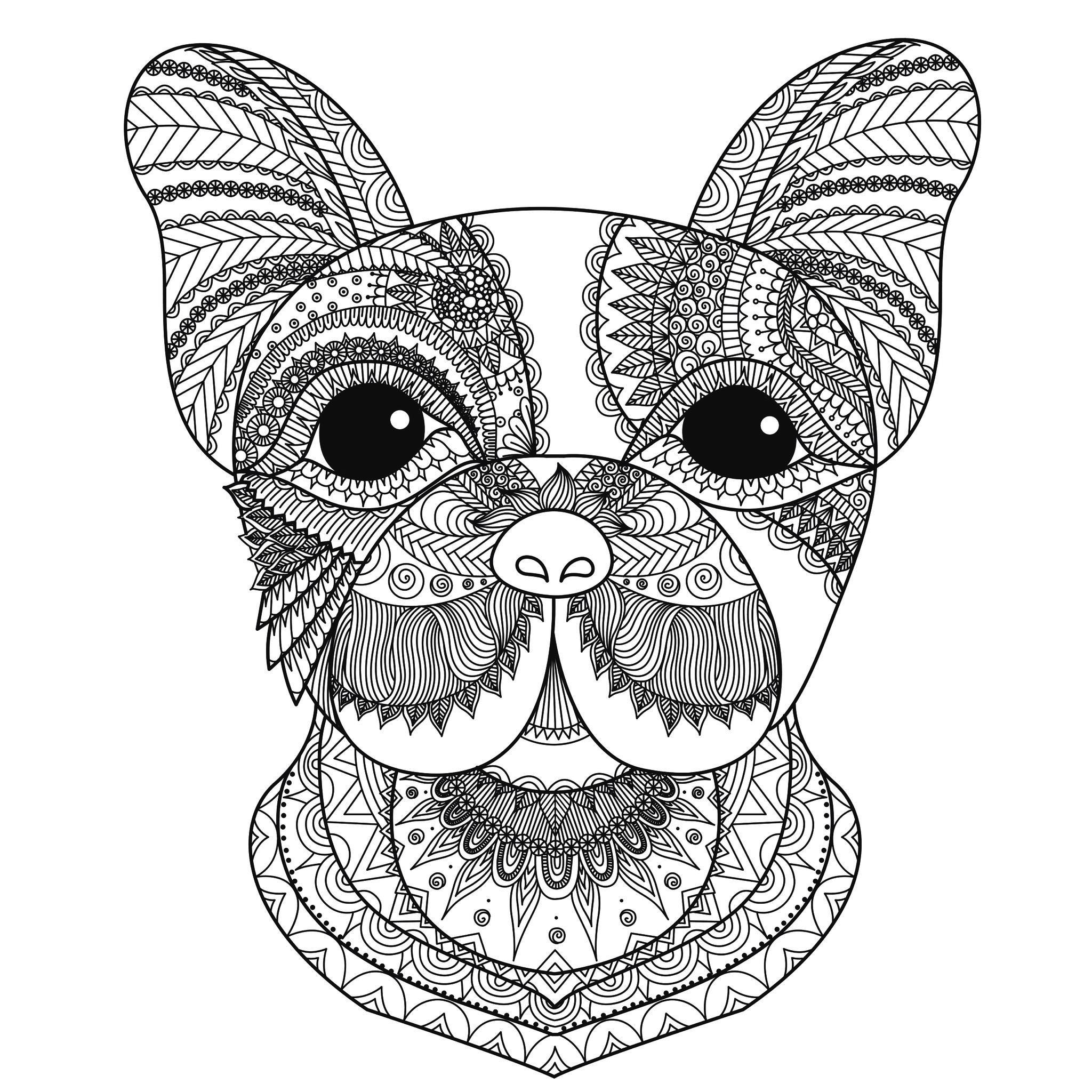 Tete de chien bimdeedee animaux coloriages difficiles - Dessin tete de chien ...