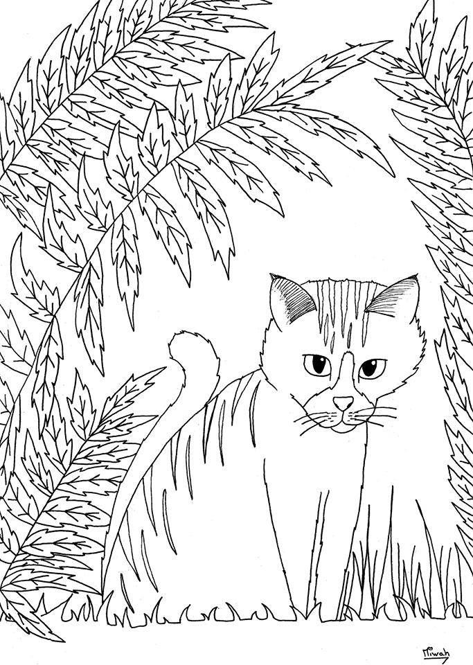Petit chaton atendrissant, coloriage simple | A partir de la galerie : Animaux | Artiste : Miwah