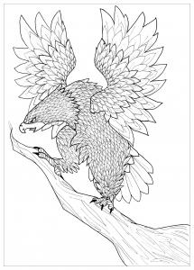 coloriage-adulte-aigle-par-pauline free to print