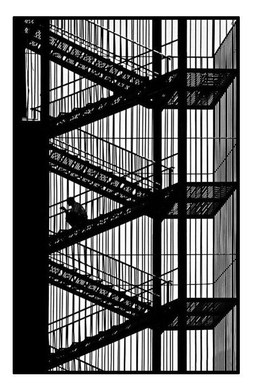 Des escaliers et une façade constituant un magnifique et original coloriage