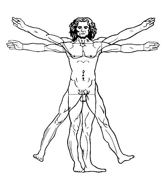 Leonard de vinci l homme de vitruve 1492