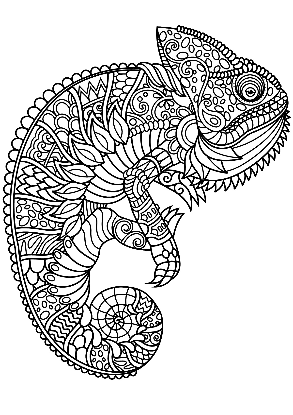 coloriage anti stress cameleon