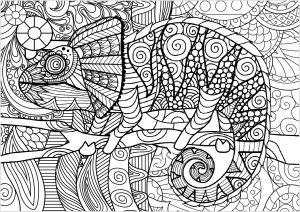 Cameleon avec motifs