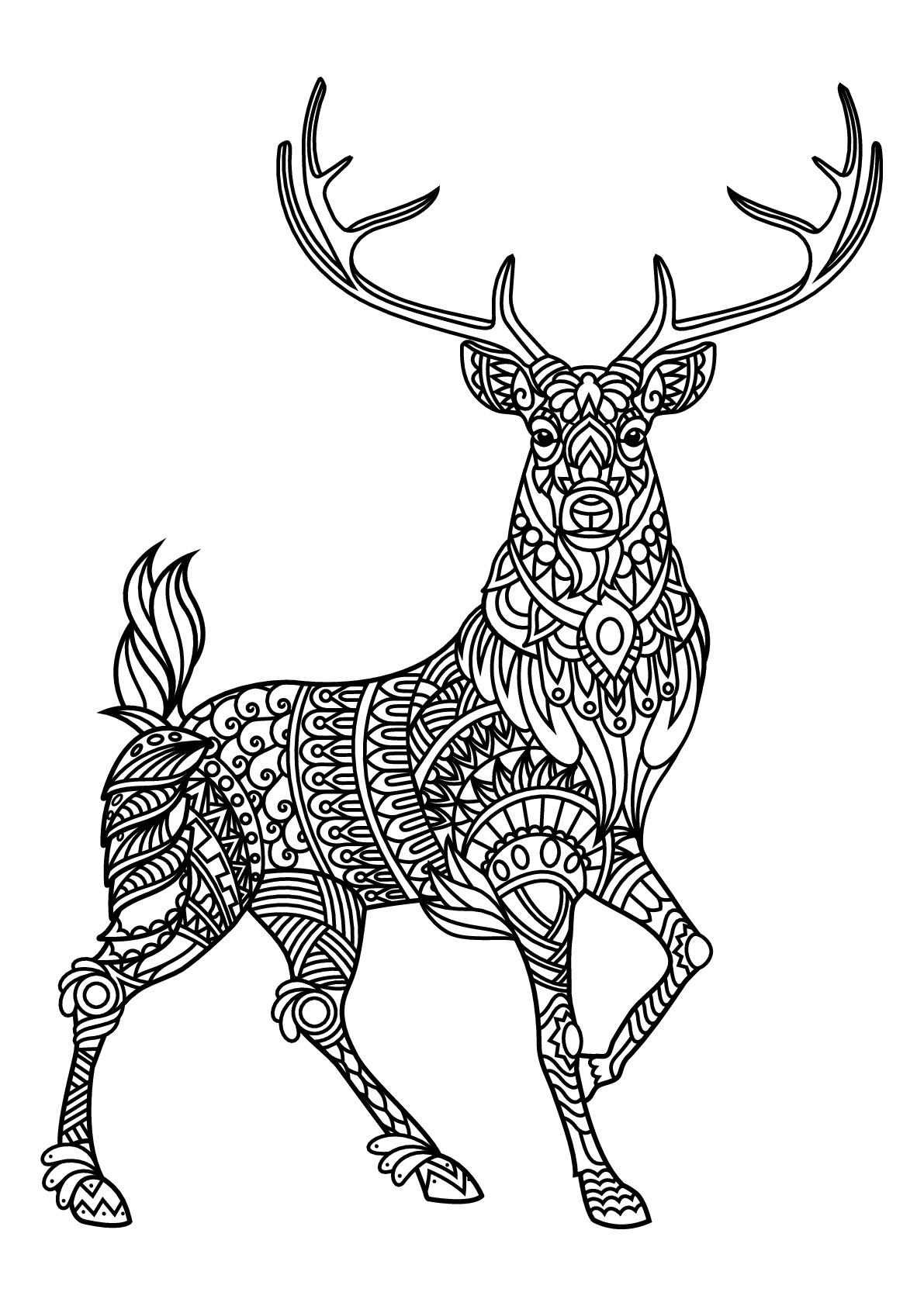 Livre gratuit cerf cerfs coloriages difficiles pour adultes - Dessin tete de cerf ...