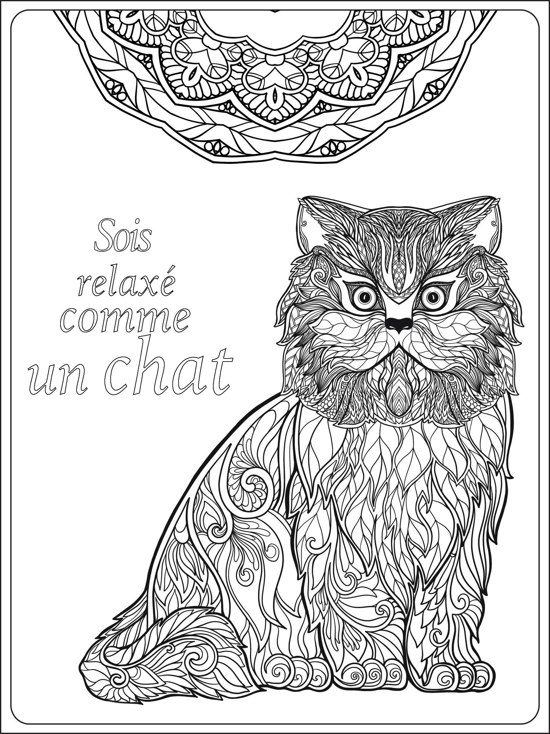 Soit relax comme un chat - Chats - Coloriages difficiles ...