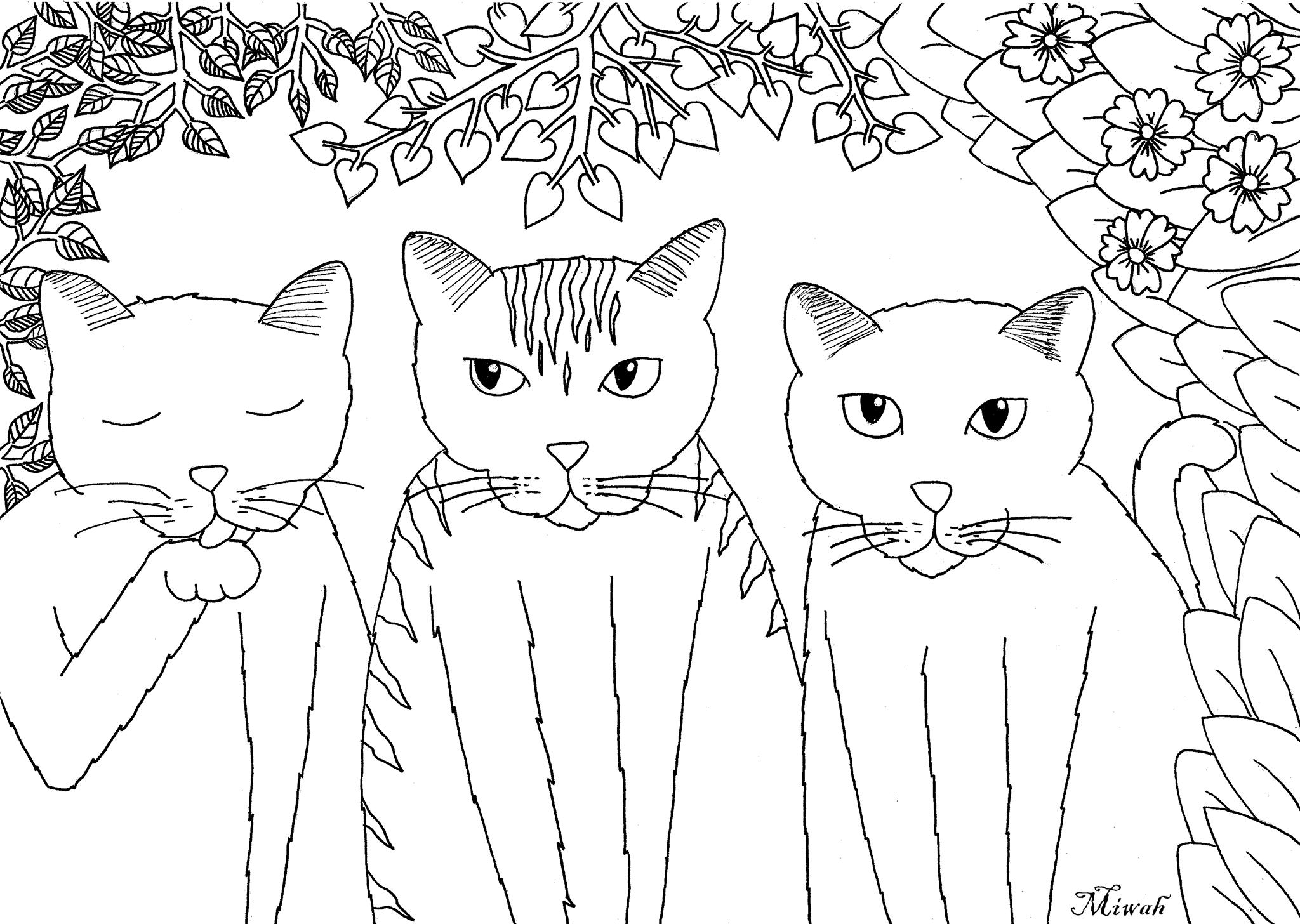 Trois jolis petits chats, coloriage simple
