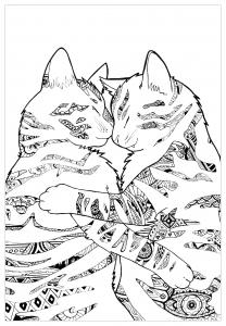 Coloriage chats par pauline
