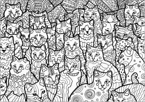 Coloriage plein de chats