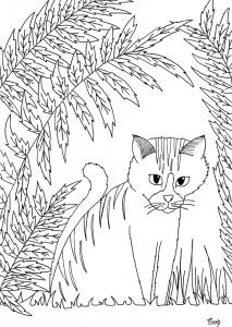Coloriage petit chat par miwah