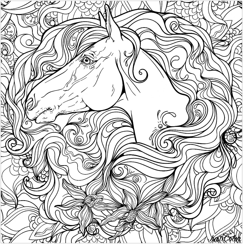 Coloriage Cheval Zen.Cheval Dans Fleurs Chevaux Coloriages Difficiles Pour