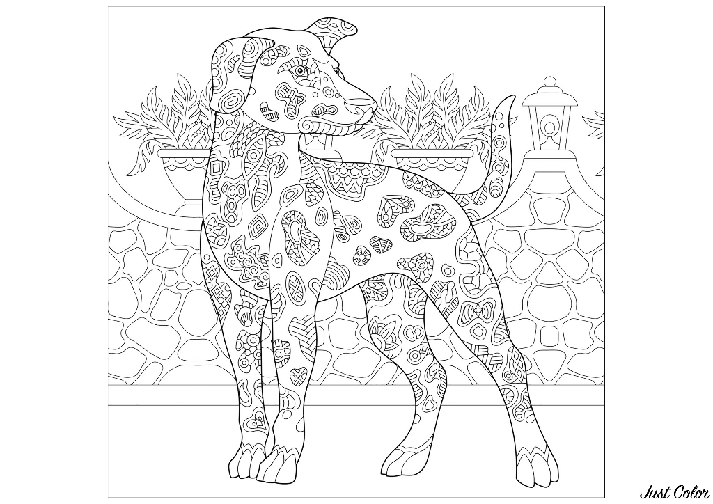 Un magnifique chien à colorier (race : Beauceron)