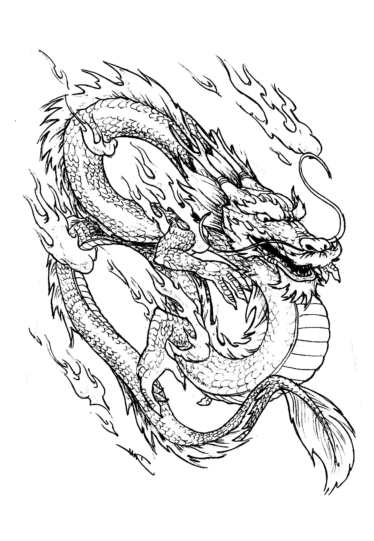Dragon chinois chine asie coloriages difficiles pour adultes - Dessins dragon ...