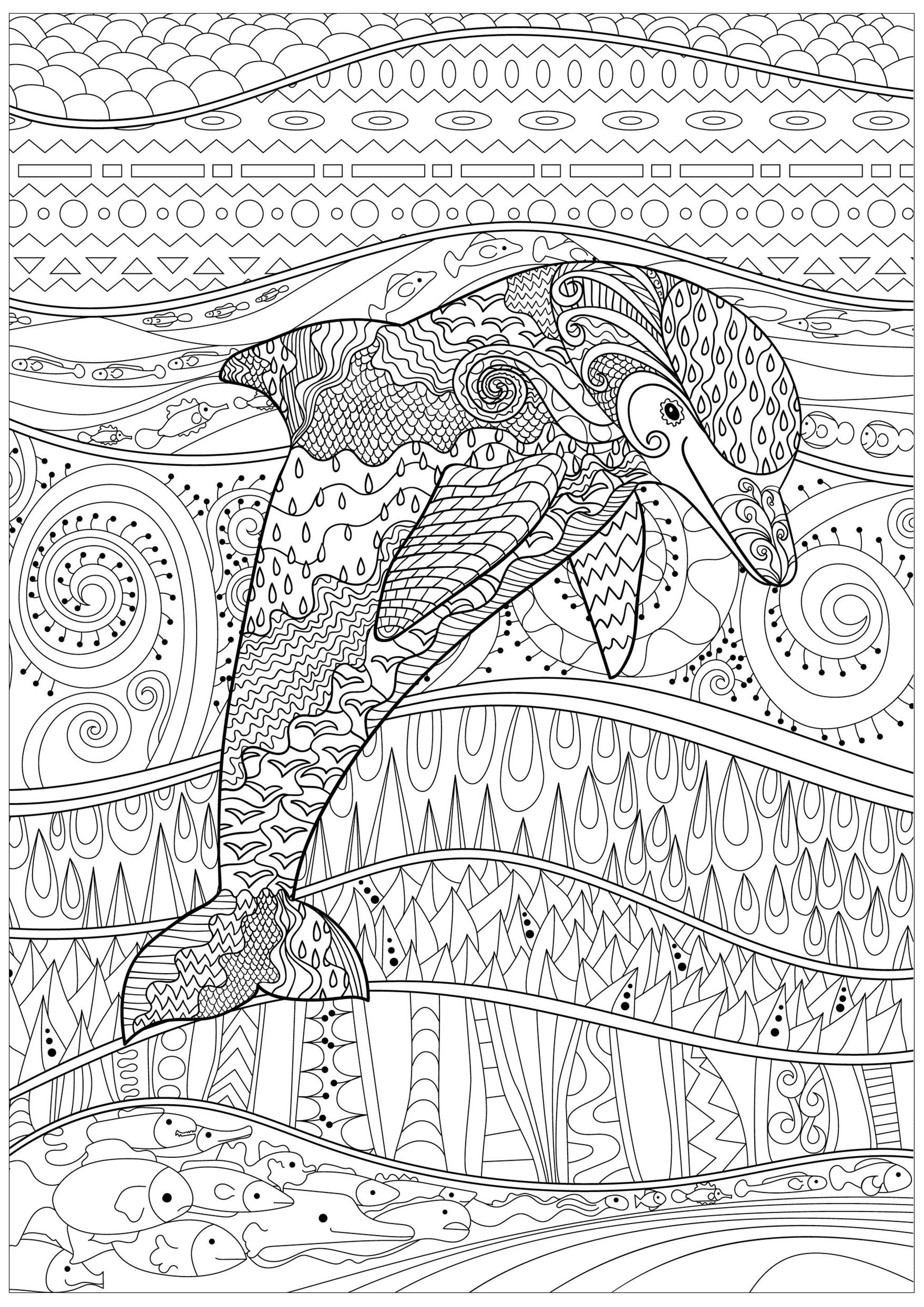 Rayonnant Dauphin Dauphins Coloriages Difficiles Pour