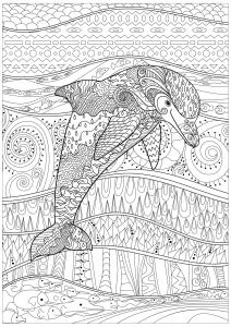 Rayonnant dauphin