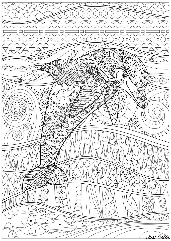 Dauphin dans une mer calme, pleine de motifs et de poissons