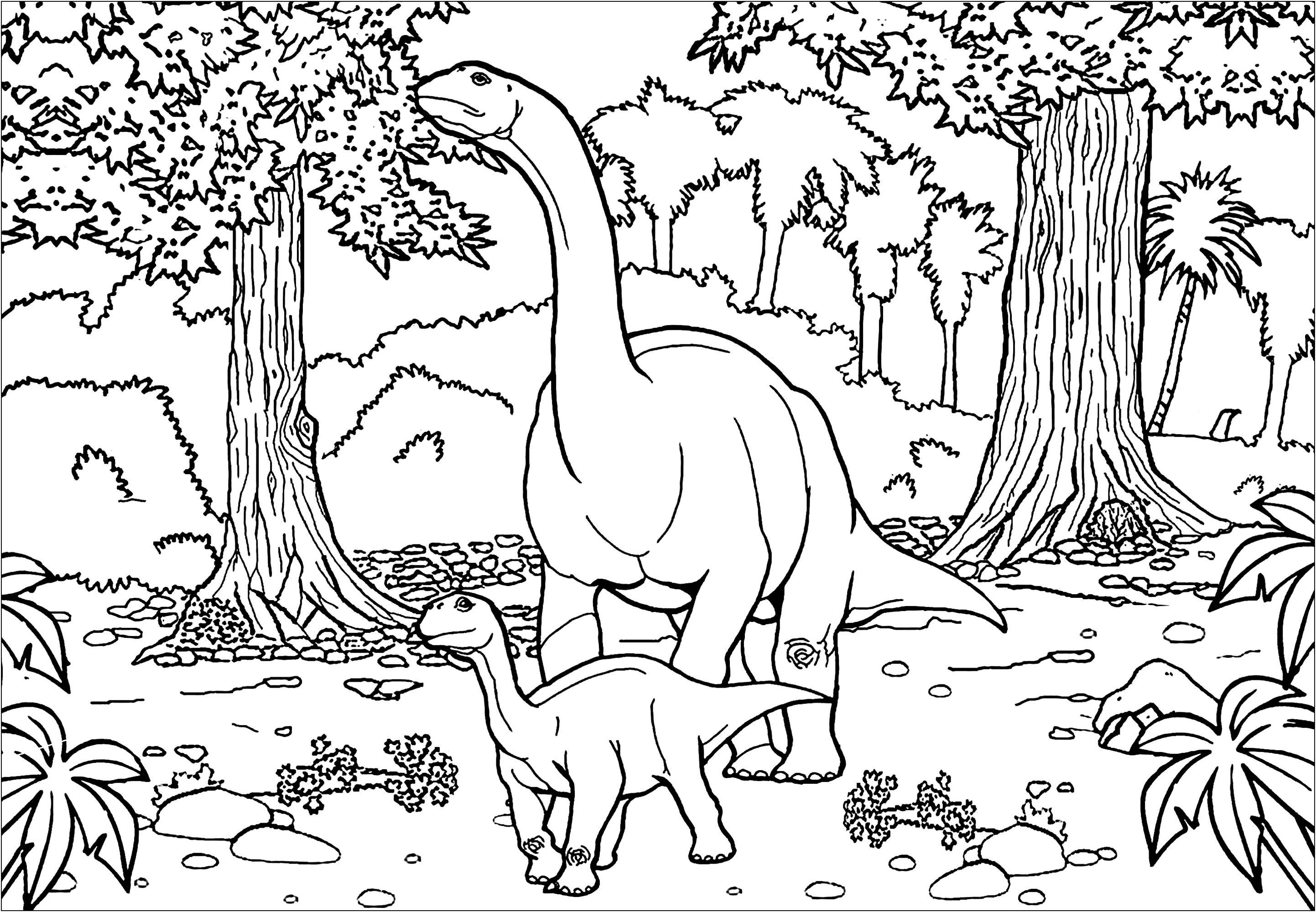 Deux Diplodocus Dinosaures Coloriages Difficiles Pour Adultes