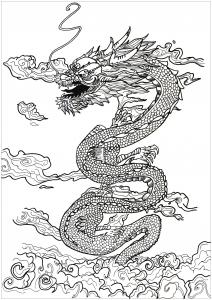 Coloriage complexe dragon inspiration asiatique