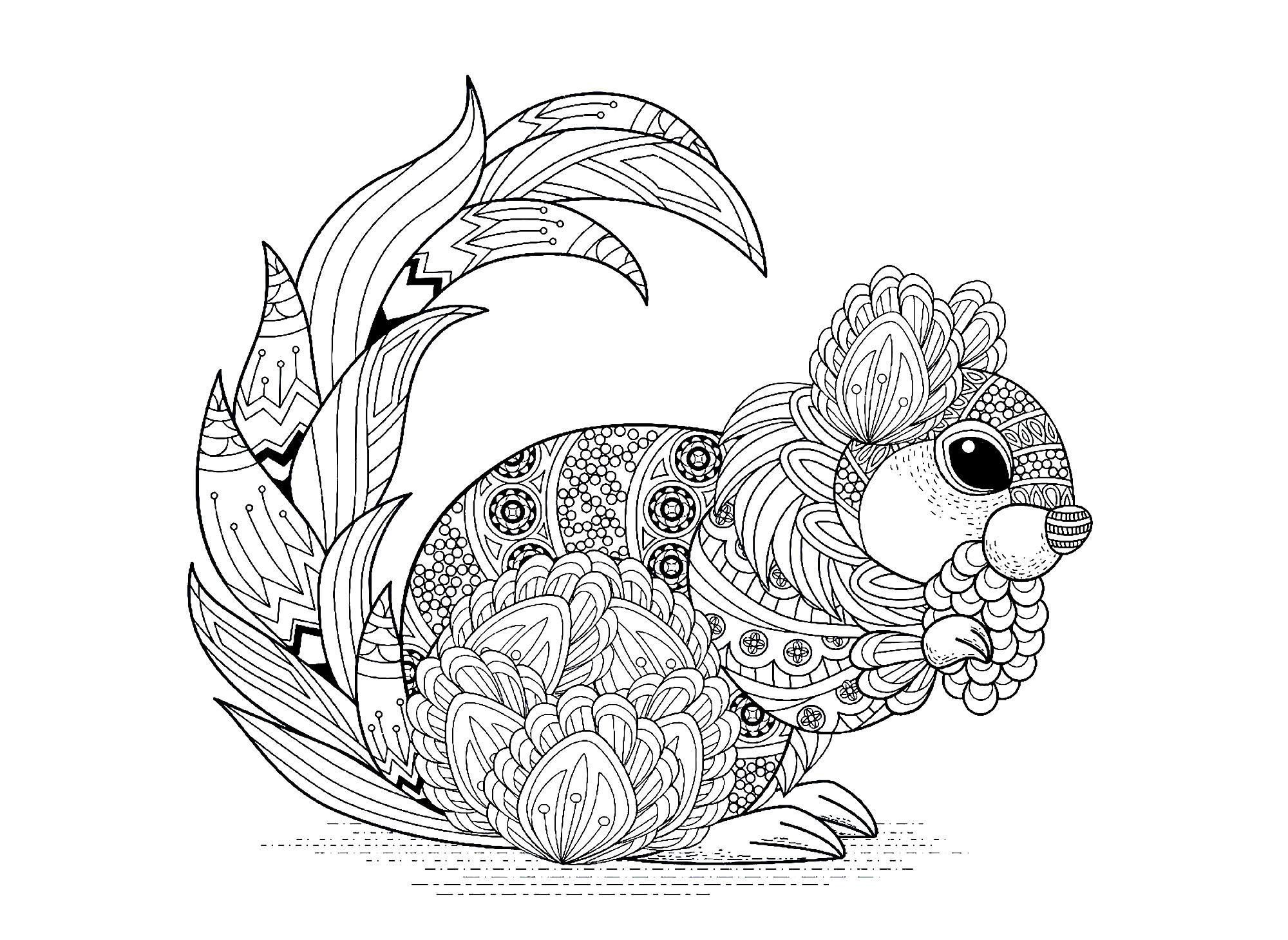 Ecureuil avec motifs - Ecureuils et rongeurs - Coloriages ...