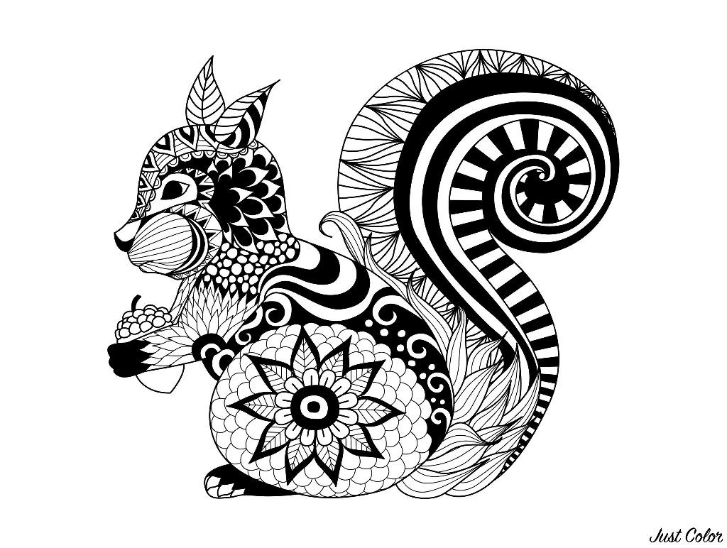 Un joli écureuil dessiné avec le style Zentangle