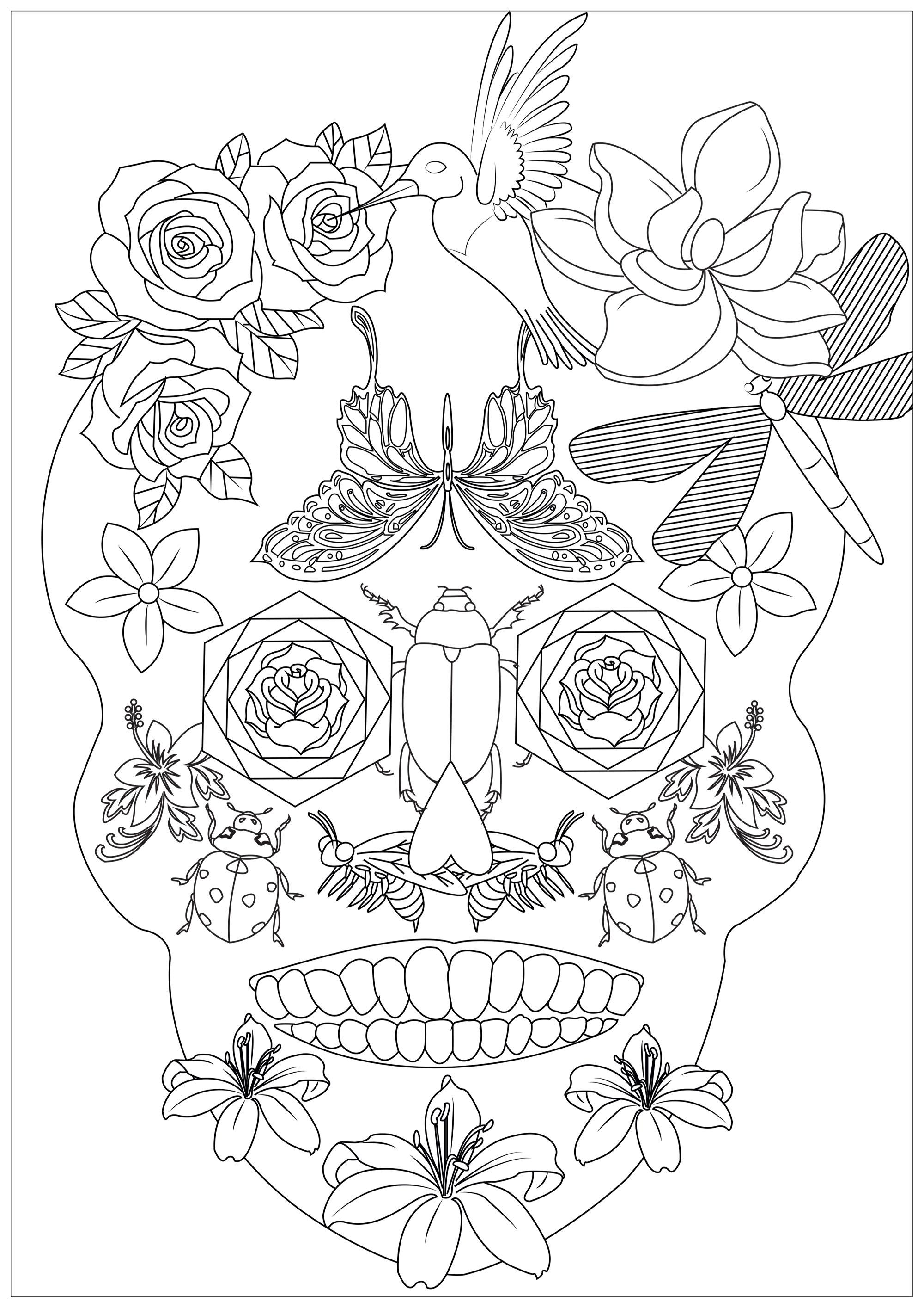 Un étrange crâne plein d'insectes et mêmes de fleurs et d'oiseaux, semblant tout droit sortis d'une paisible prairie.