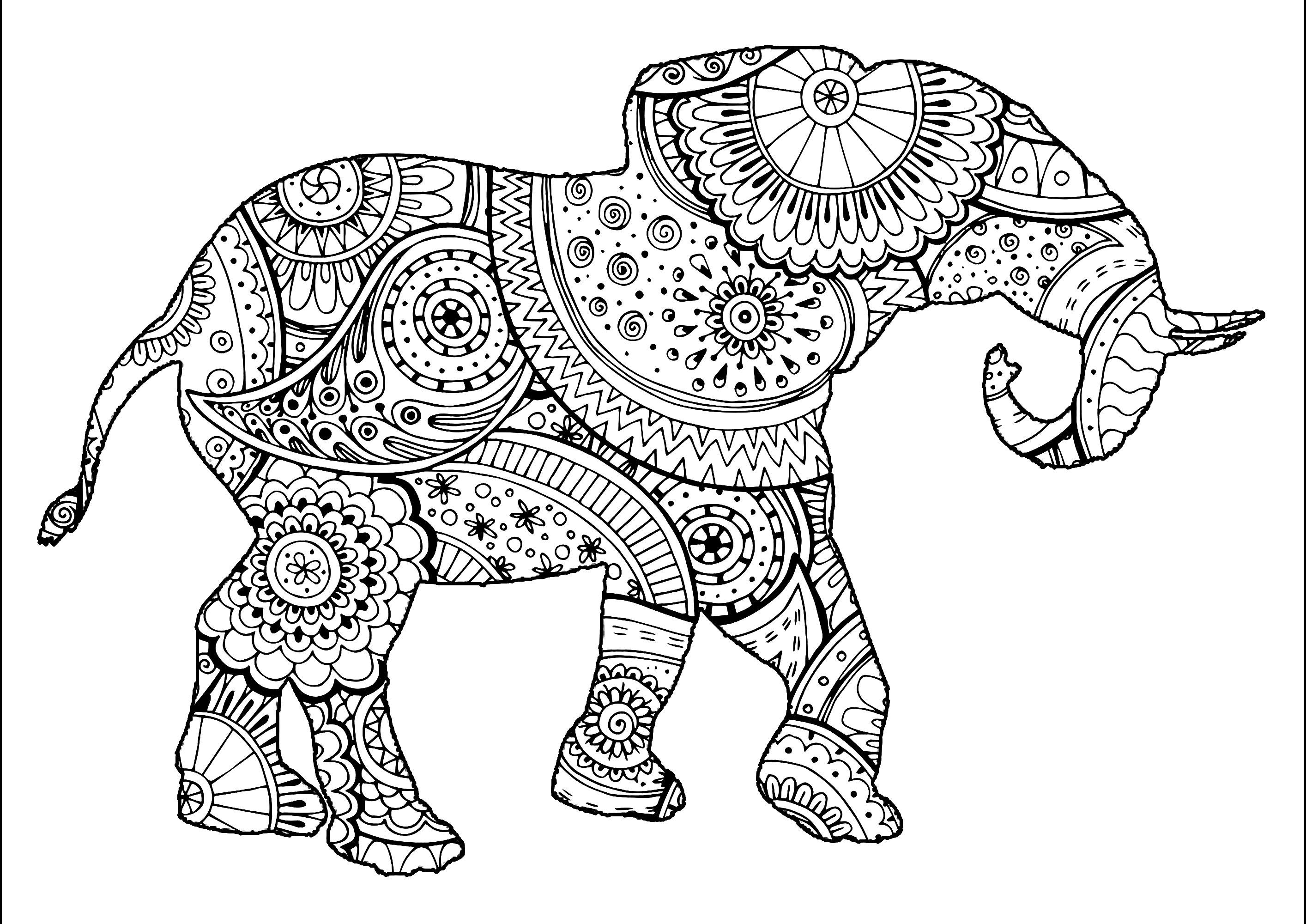 Joli éléphant avec motifs Zentangle et Paisley à colorier
