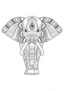 Eléphant et motifs