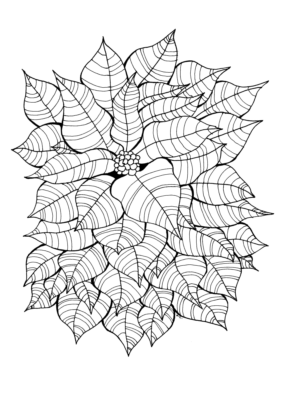 Jolies feuilles encerclant une jolie fleur, dessin original
