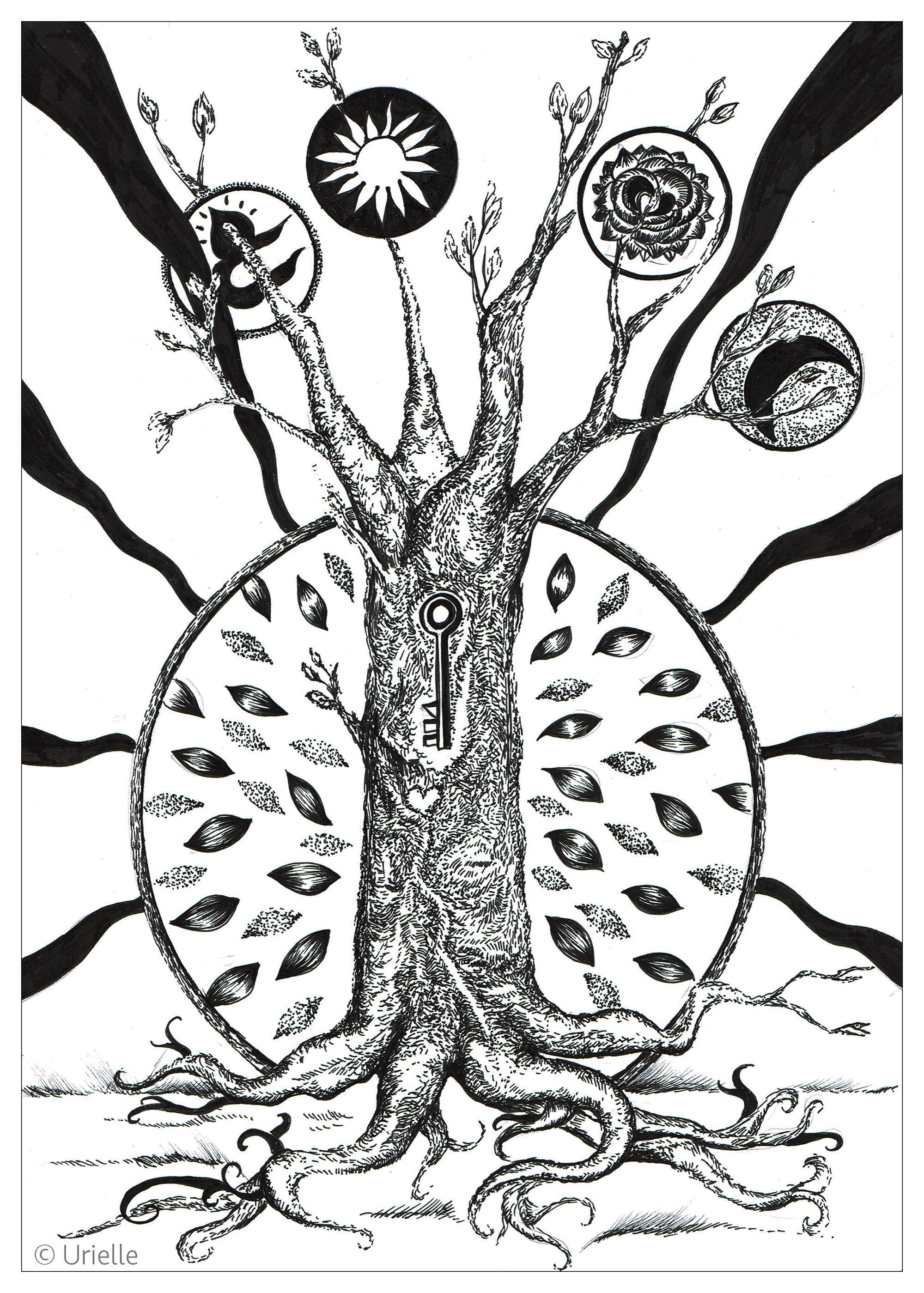 La clé de l'arbreA partir de la galerie : Fleurs Et VegetationArtiste : Urielle