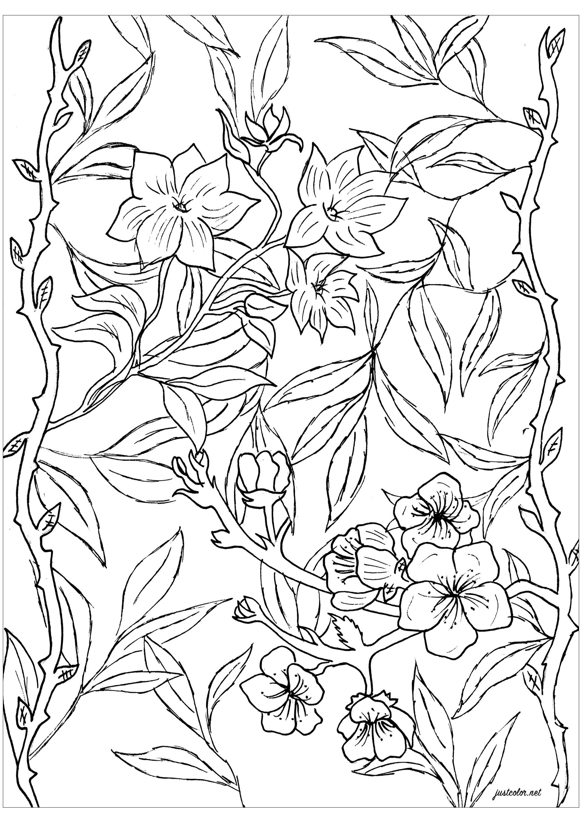 Coloriez ces belles feuilles et fleurs