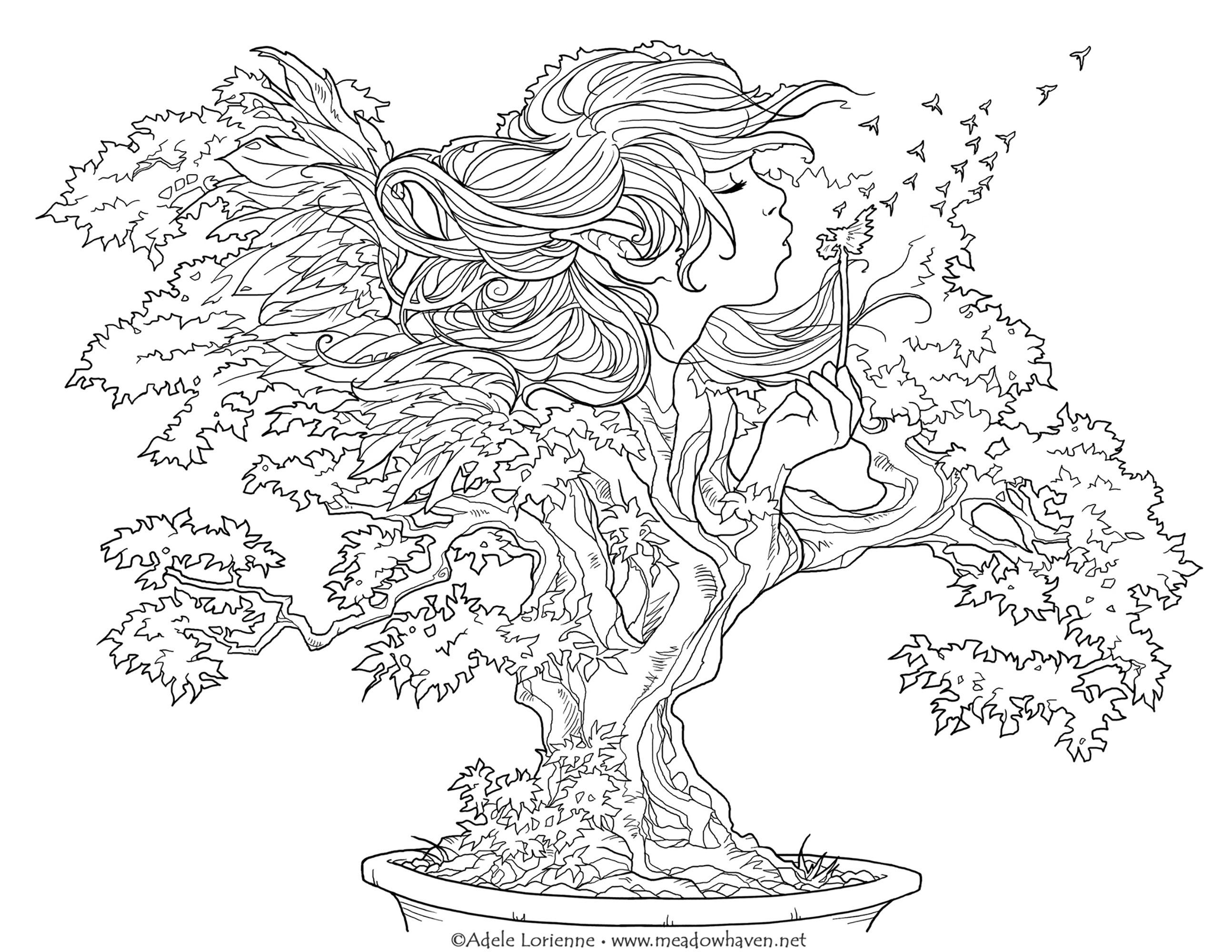 Faites un voeux ! Ce bonsaï le réalisera si vous le coloriez.