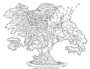 Les voeux du bonsaï