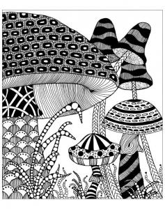 Coloriage adulte champignons fantastiques