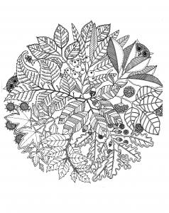 Coloriage adulte fleurs vegatation mandala