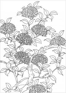 Coloriage arbre fleuri