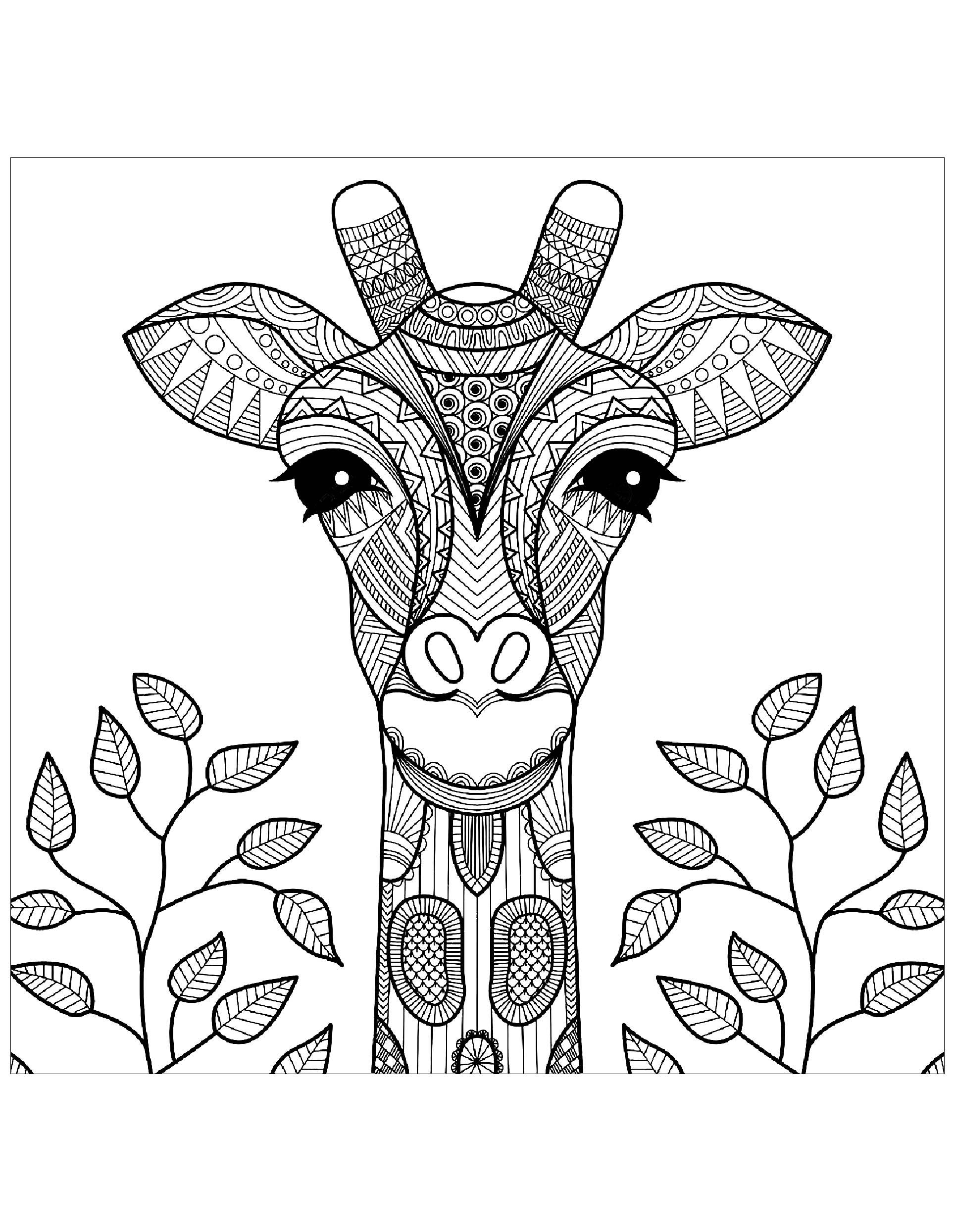 Tete de girafe et feuilles girafes coloriages for Giraffe mandala coloring pages