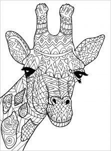 Tête de girafe à colorier