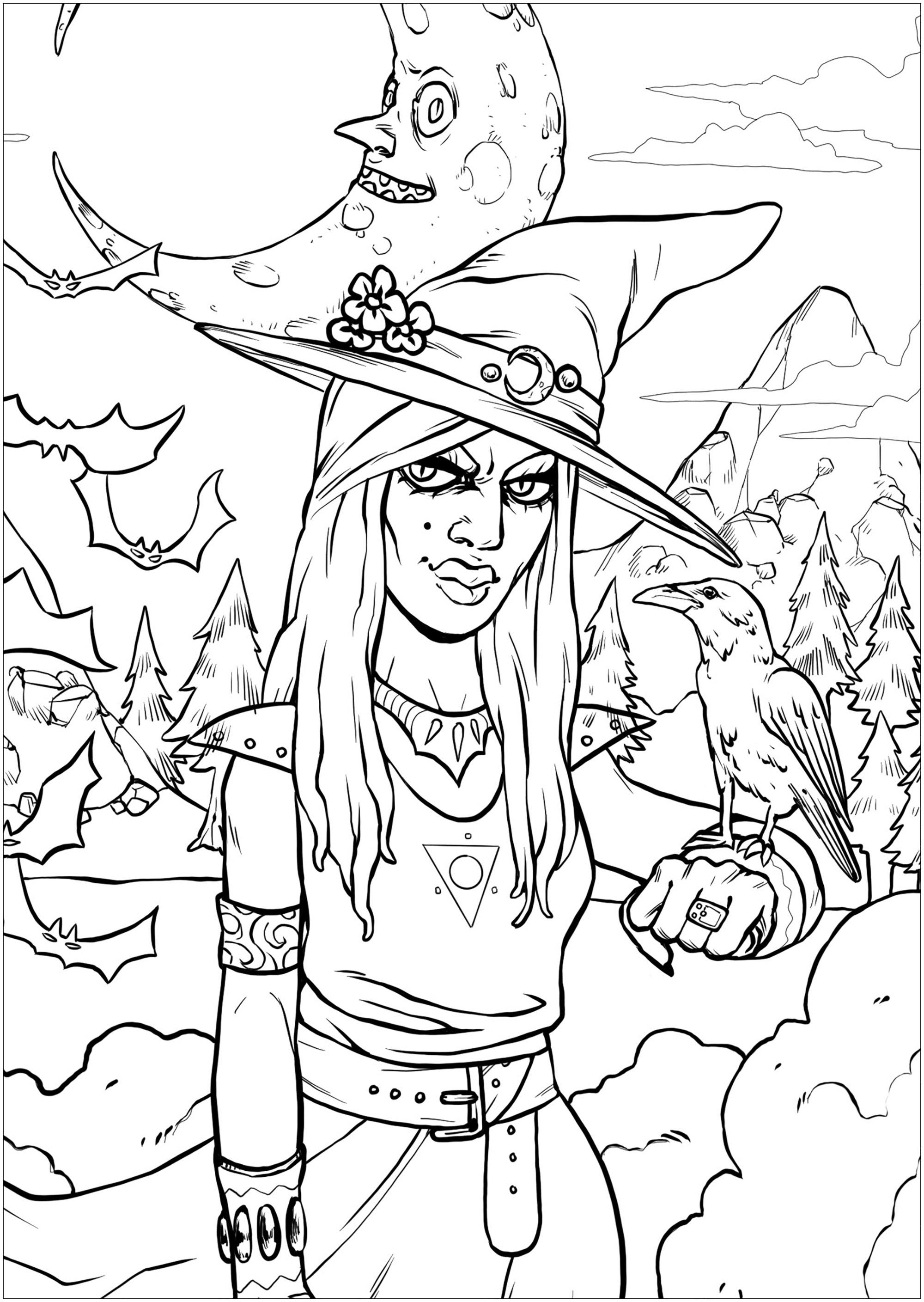 Une sorcière ensorcelante et son corbeau, dans un paysage menaçant - version cadre resserré