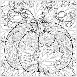 Citrouille et feuilles d'Automne