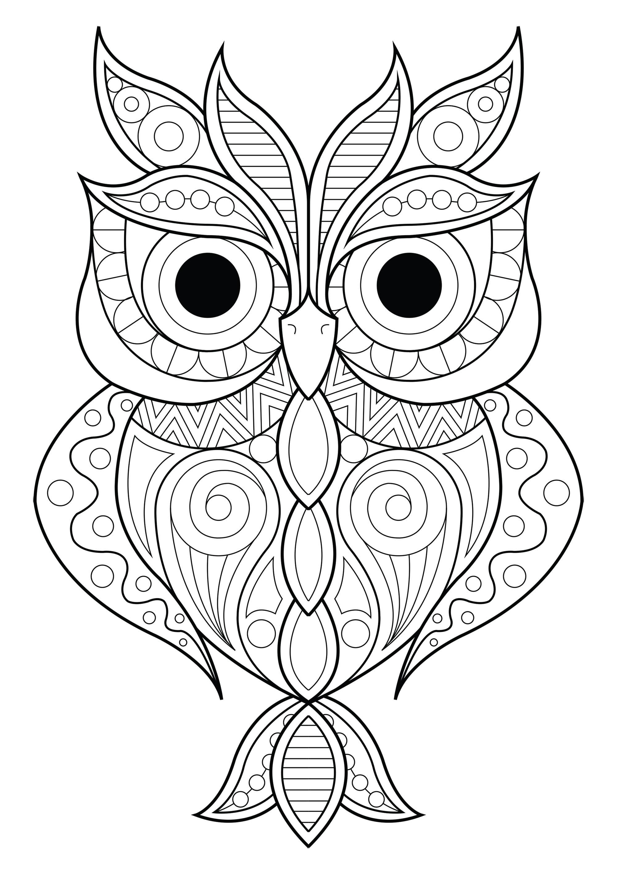 Hibou aux motifs simples 2 Hiboux Coloriages