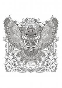 Coloriage hibou avec motifs complexes