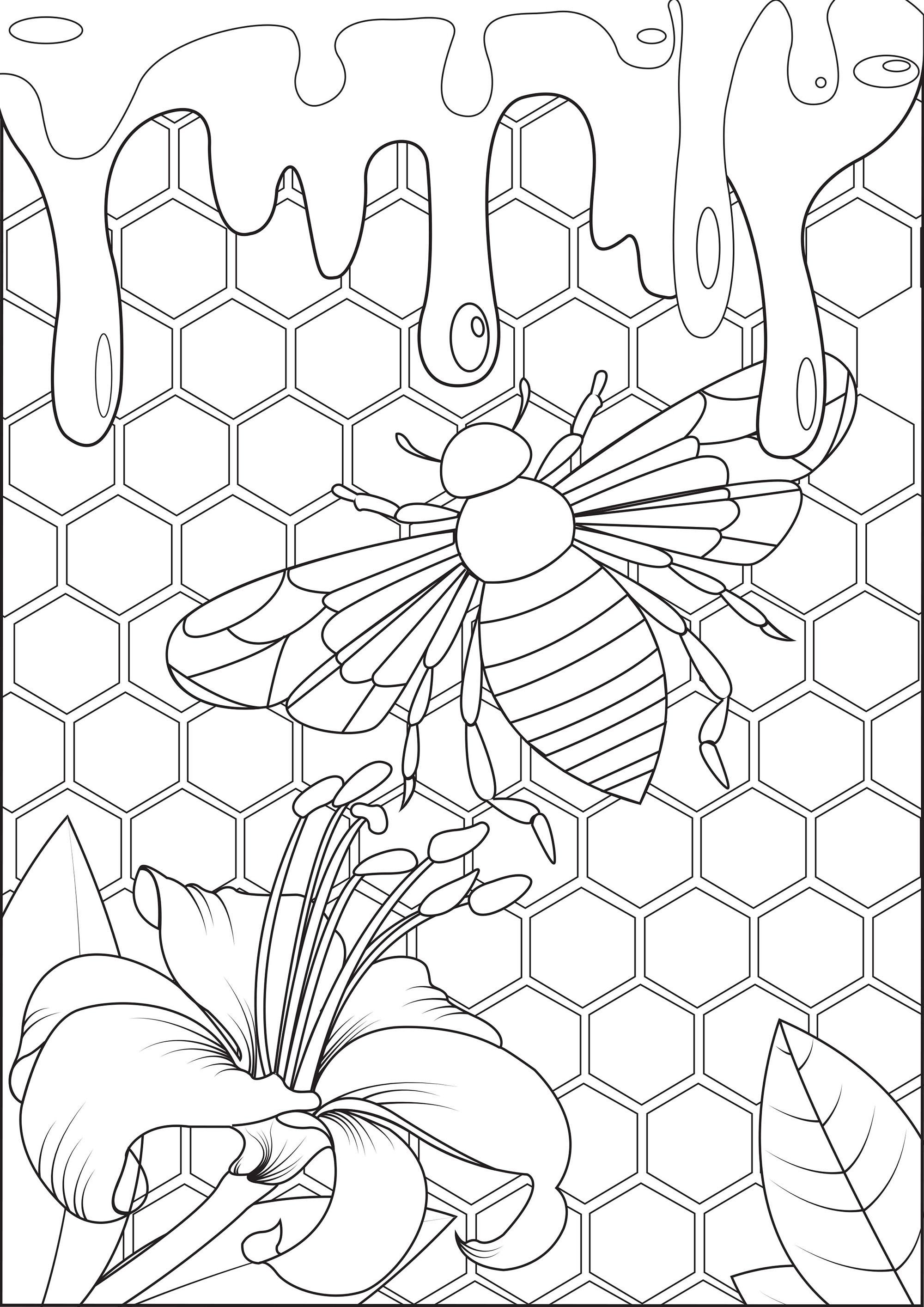 Plongez au coeur de la ruche et goutez au miel tout frais de cette abeille !