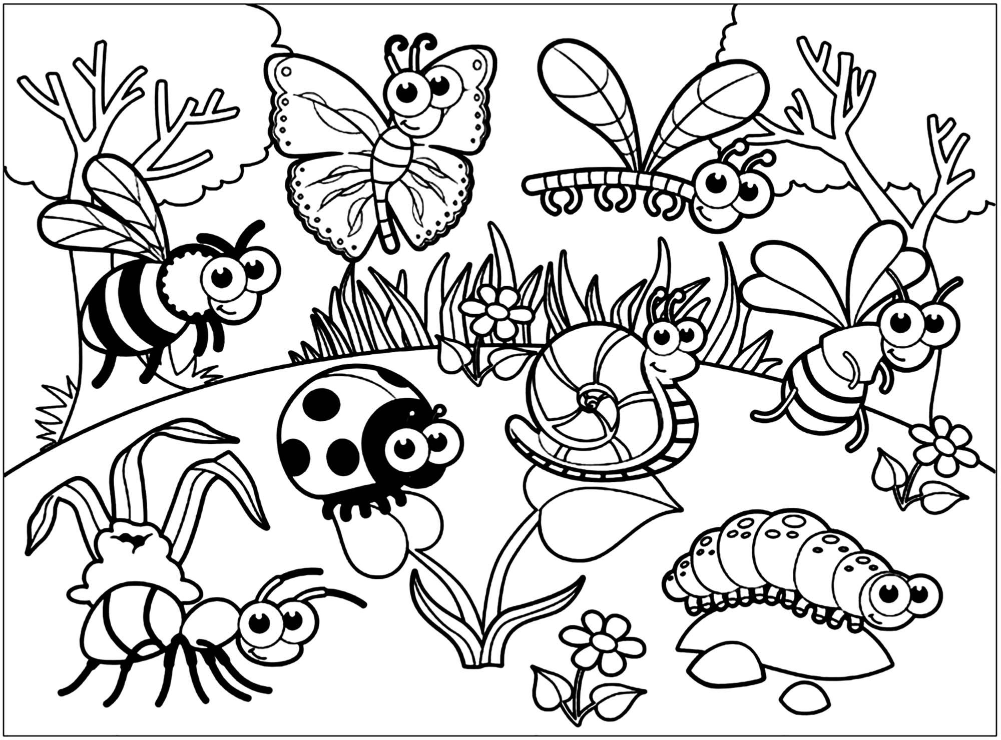 Insectes variés dessinés avec un style très cartoon / enfantin
