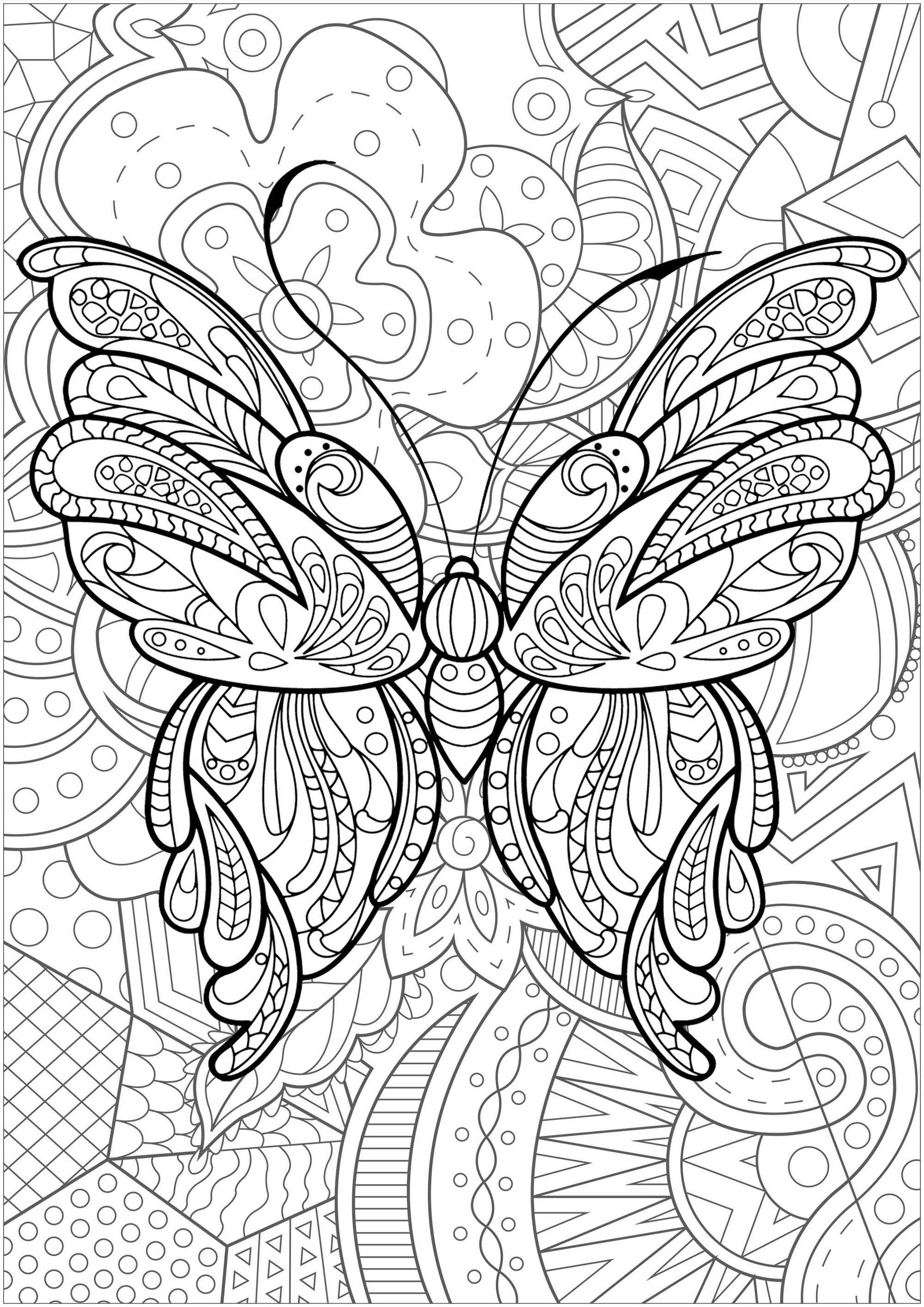 Magnifique papillon avec motifs, et fond fleuri - 1