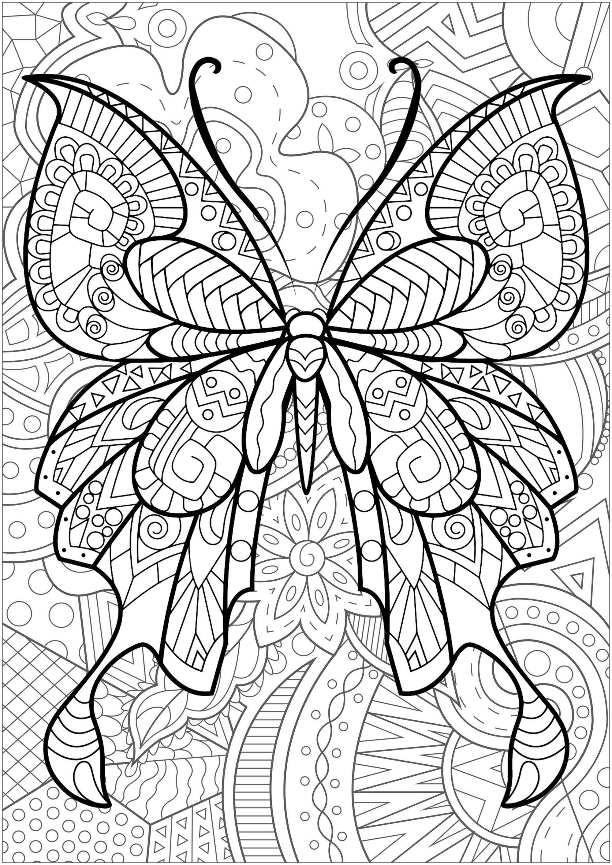 Magnifique papillon avec motifs, et fond fleuri - 2